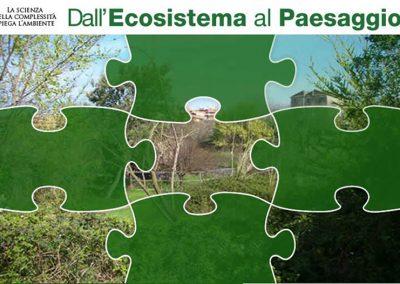 Dall'ecosistema al paesaggio