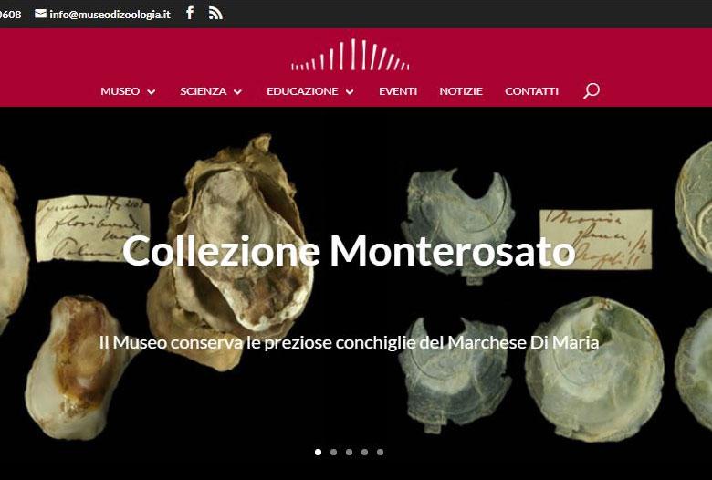 Sito web del Museo Civico di Zoologia