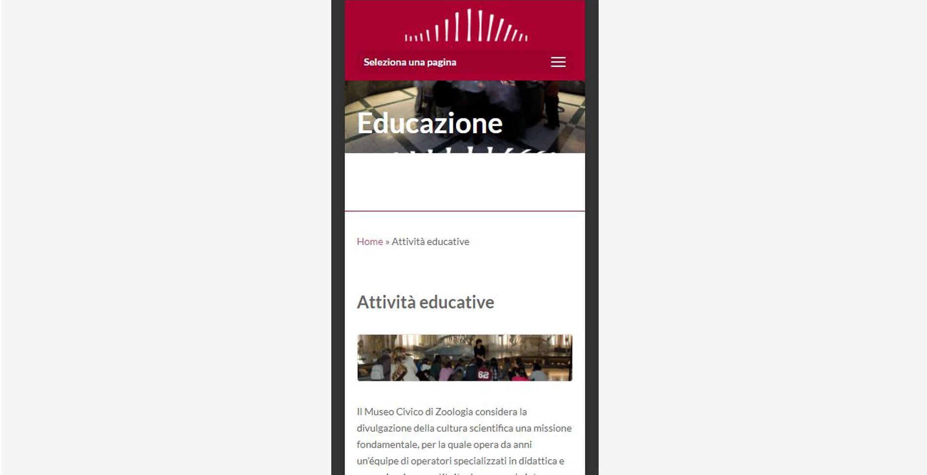 Sito web Museo di Zoologia modalità smartphone