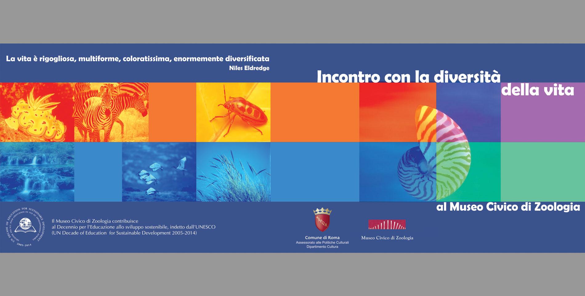 Copertina Incontro con la diversità della vita al Museo Civico di Zoologia